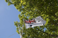 The Navy Flag
