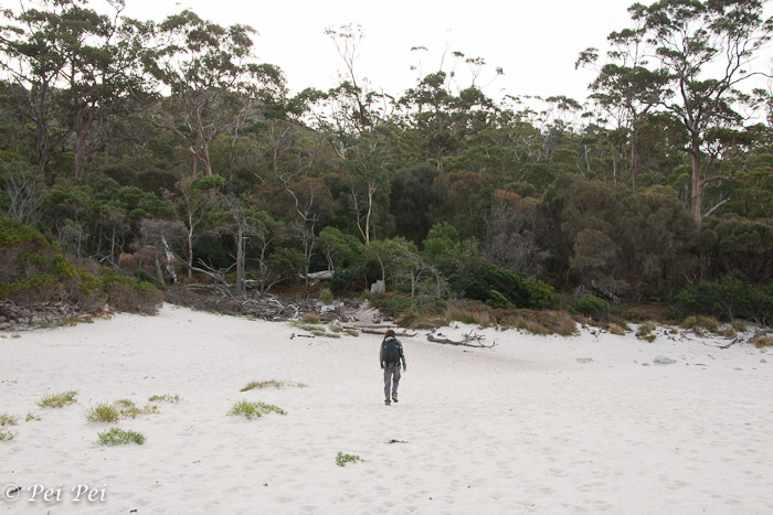 almost alone at Wine Glass Bay