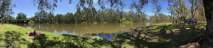 Panorama by Goulburn River